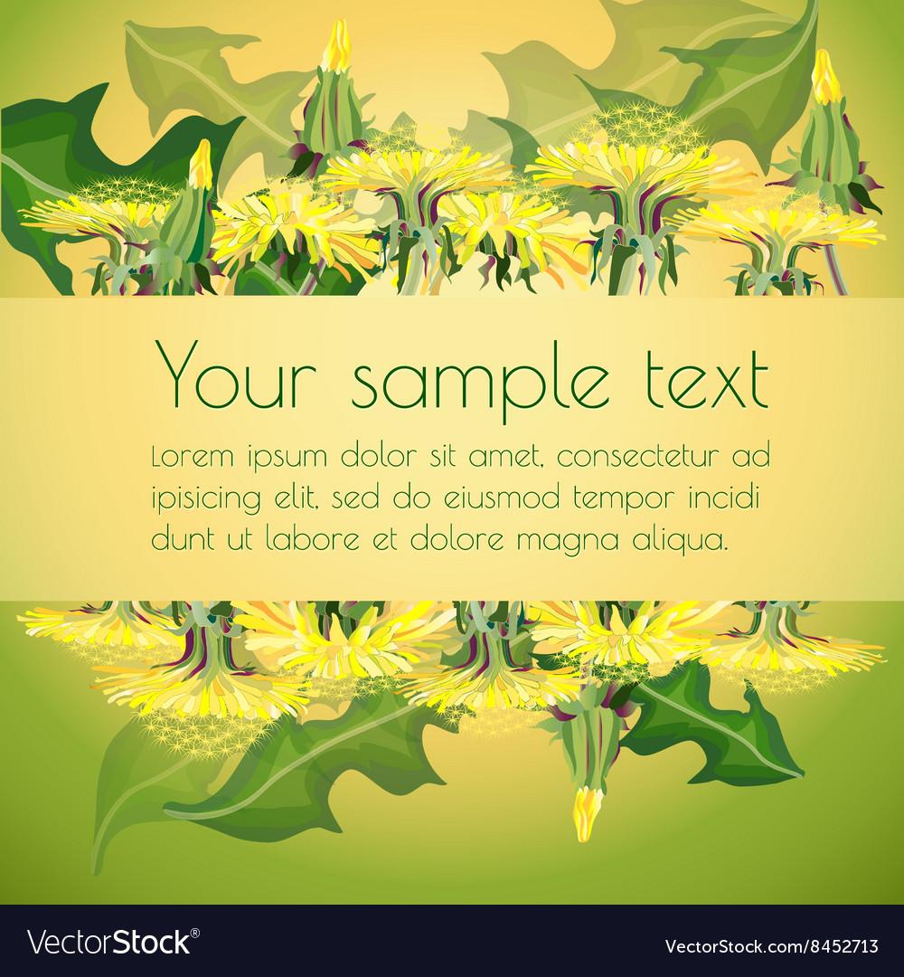 Dandelions on floral background vector image