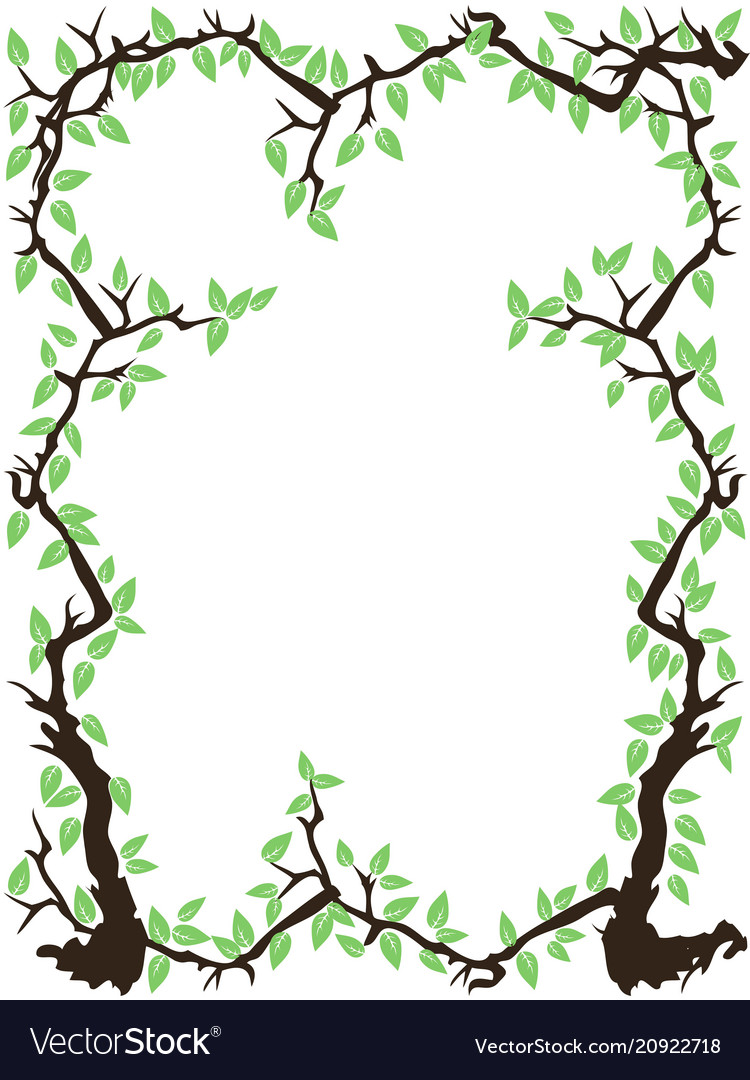 Green tree branch leaves frame