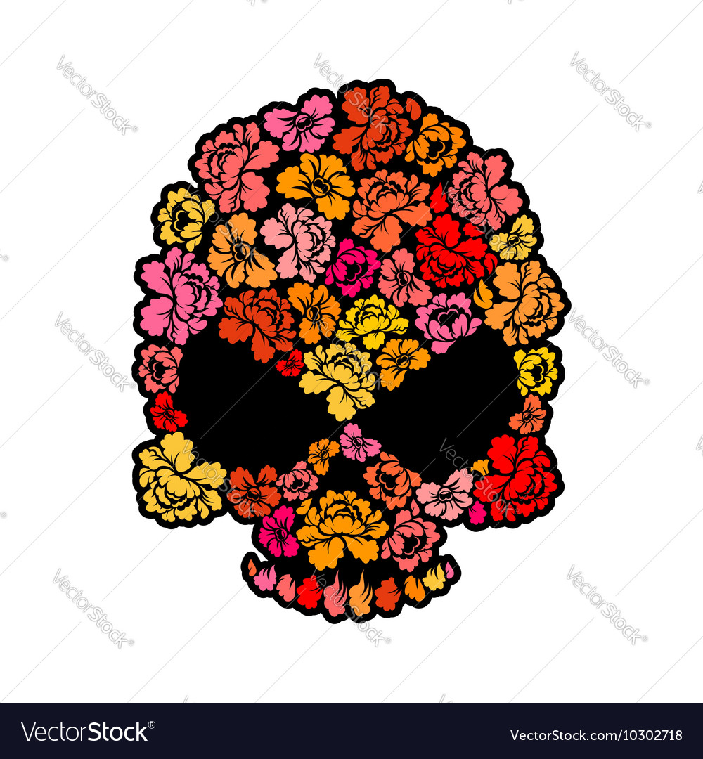 Skull with roses Petals of flowers skeleton head vector image