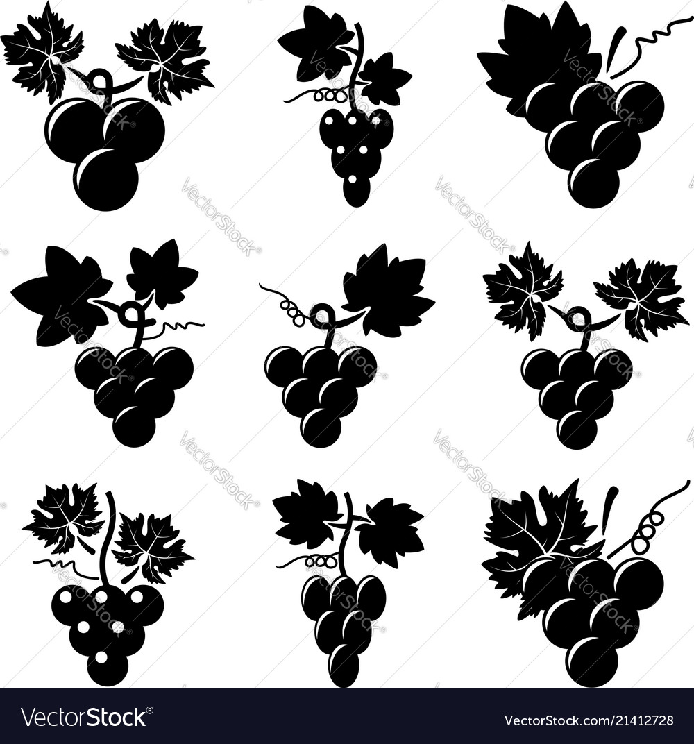 Black and white icons of grapes