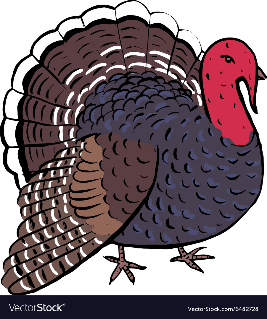 Turkey for thanksgiving day