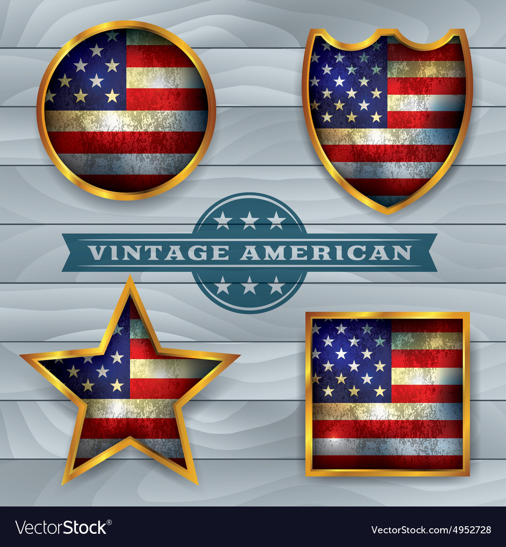 Vintage American Flag Badges and Emblems vector image