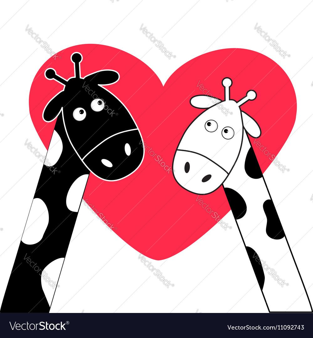 Cute cartoon black white giraffe boy and girl Big vector image
