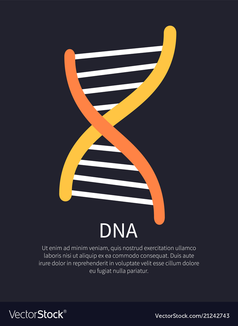 Dna yellow and orange helix colorful