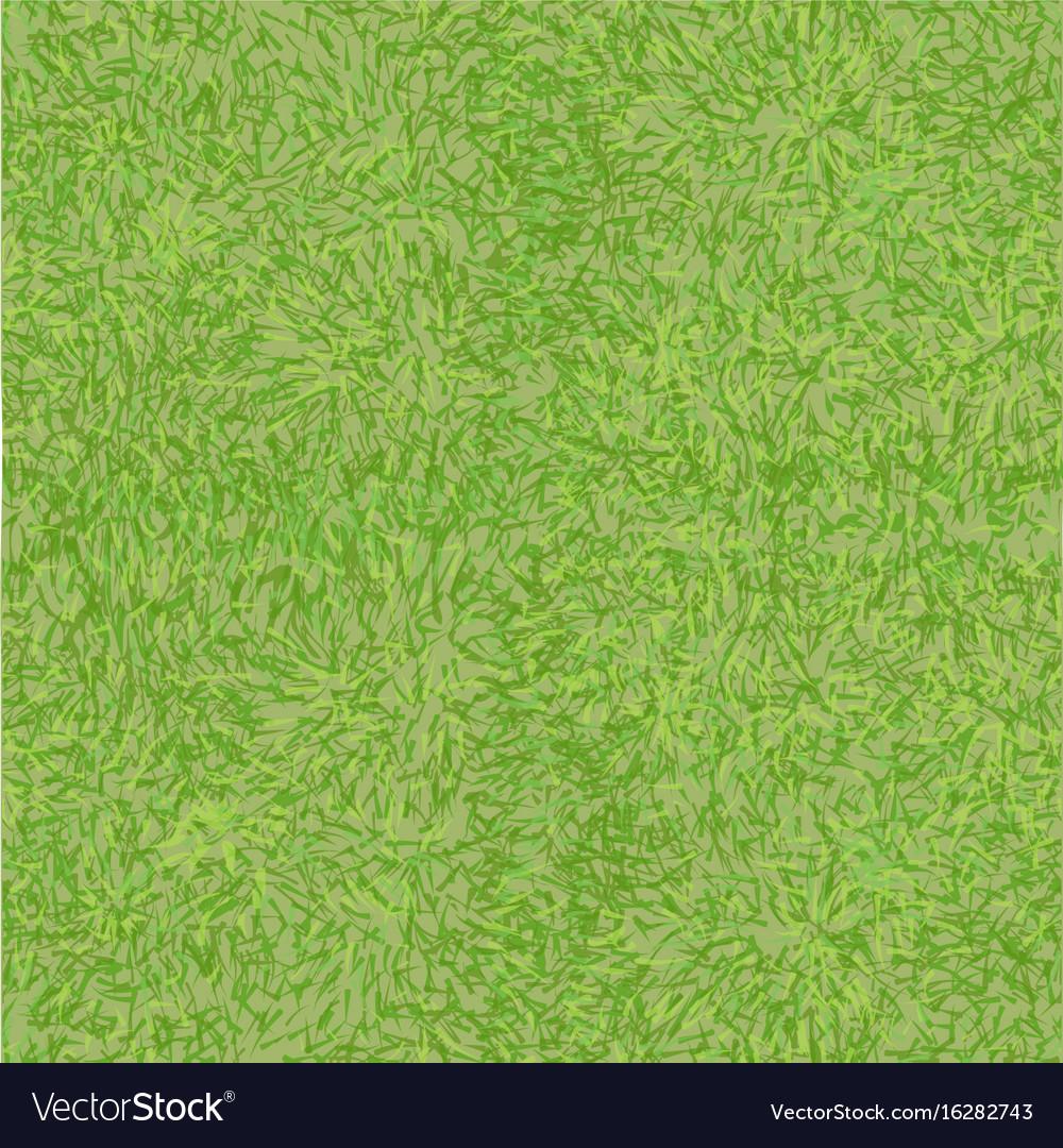 grass texture royalty free vector image vectorstock vectorstock