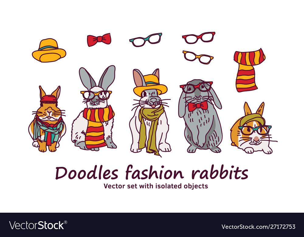Doodles fashion rabbits pets animals isolated
