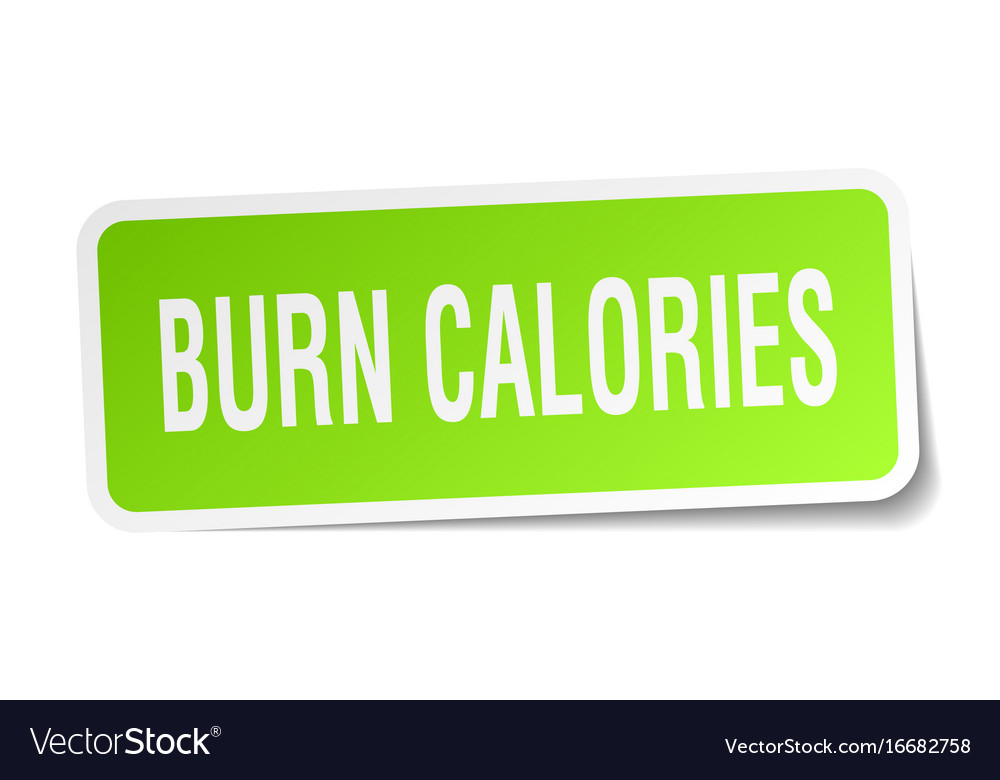 Burn calories square sticker on white vector image