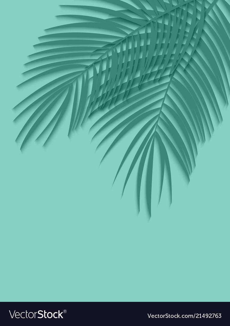Beautiful palm leaf background