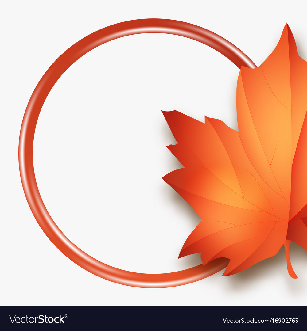 hello autumn sales fall leaves season sale vector image