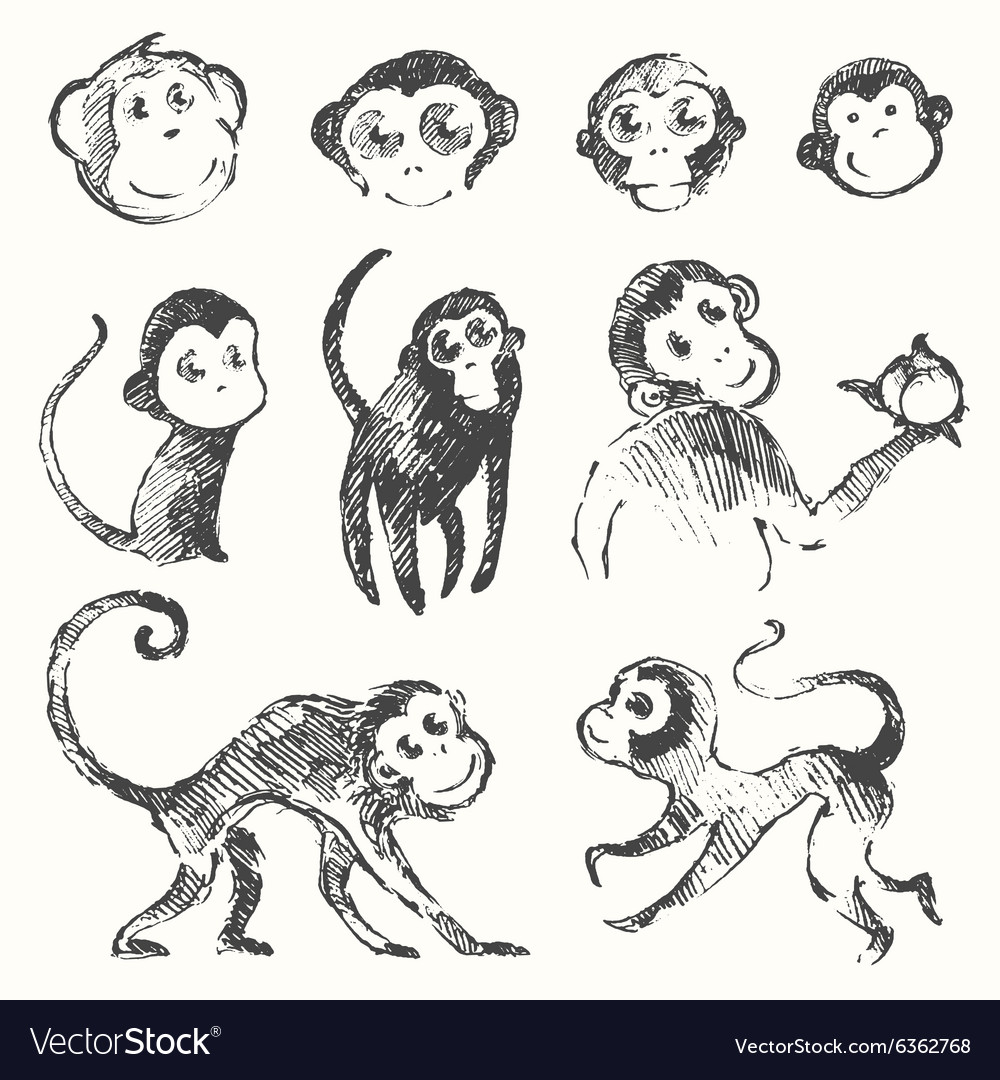 Set funny monkey new year Chinese drawn sketch