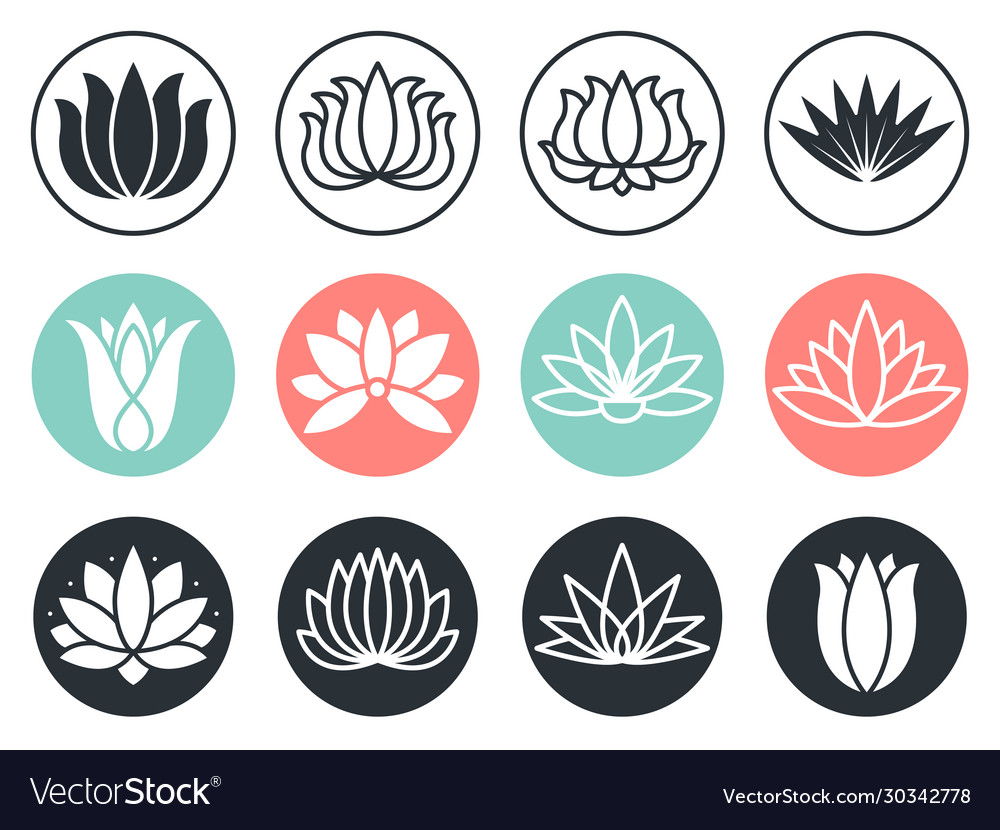 Lotus flowers icon stylized abstract beauty