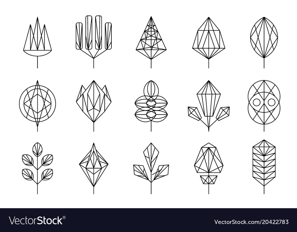 Geometrical leaves of trees big set collection of