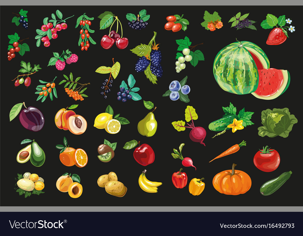 Fruits vegetables and berriesorganic food icons