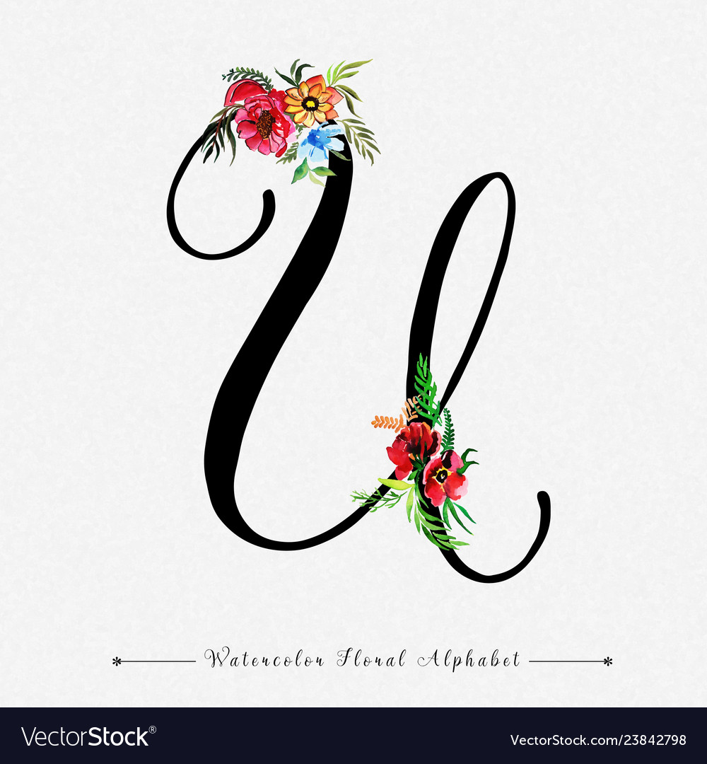 Letter U Watercolor Floral Background Royalty Free Vector