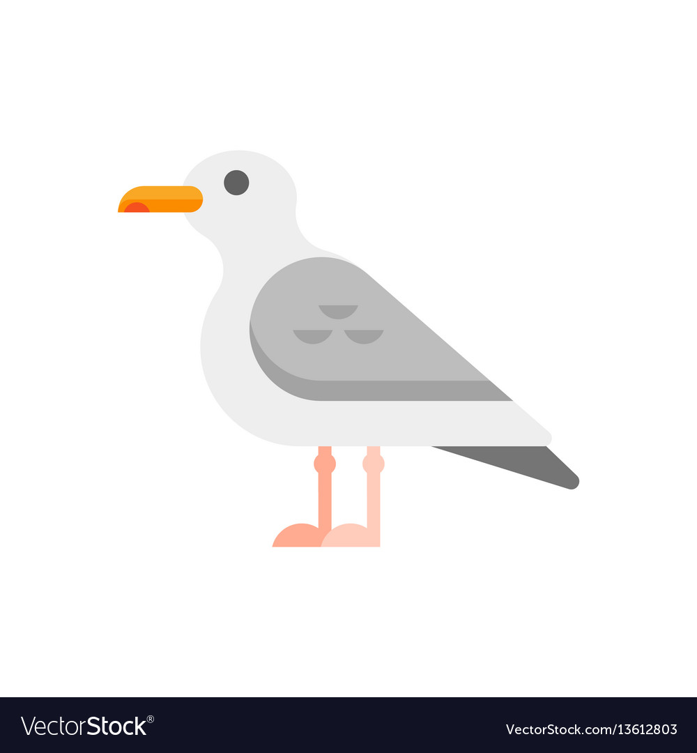 Flat style of seagull vector image