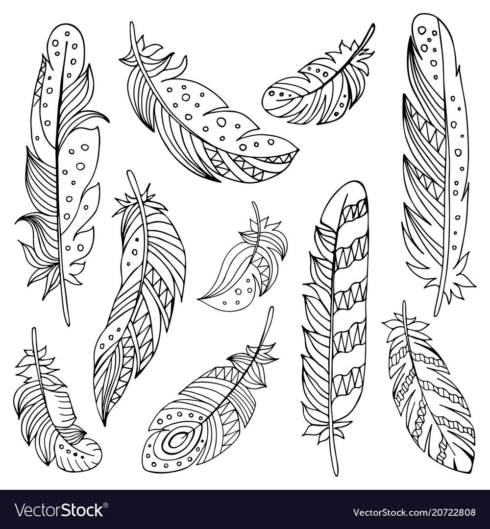 Decorative set of feathers in ethnic style