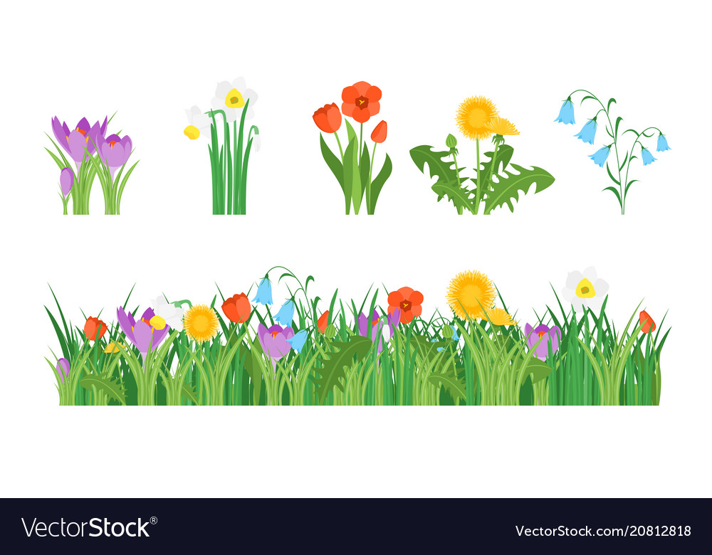 Cartoon garden flowers and element set Royalty Free Vector