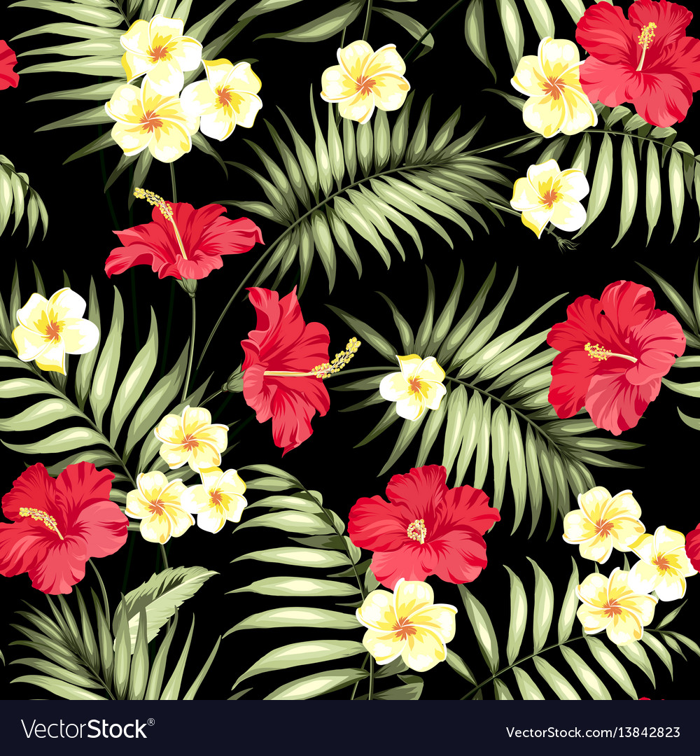 Tropical plumeria and green palm leaves