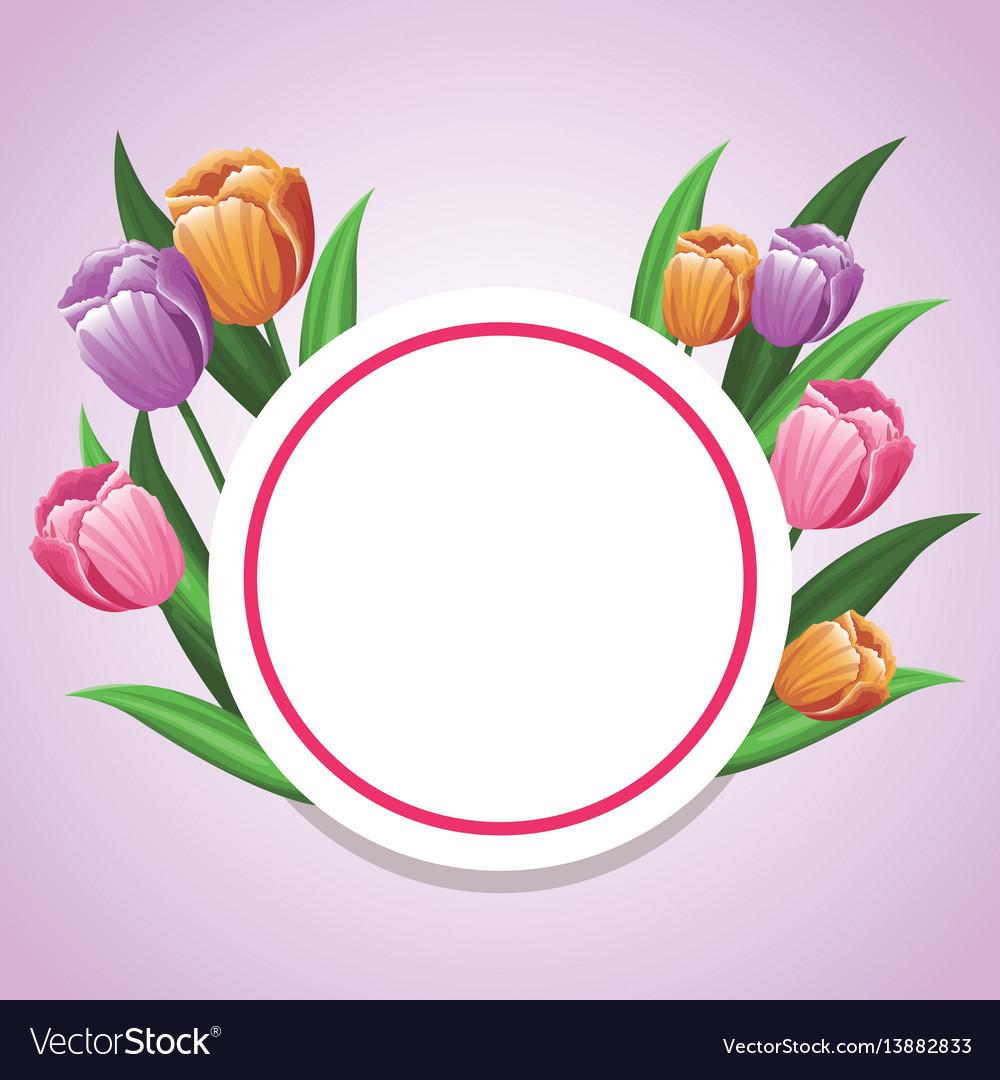 Card tulip flower decoration template