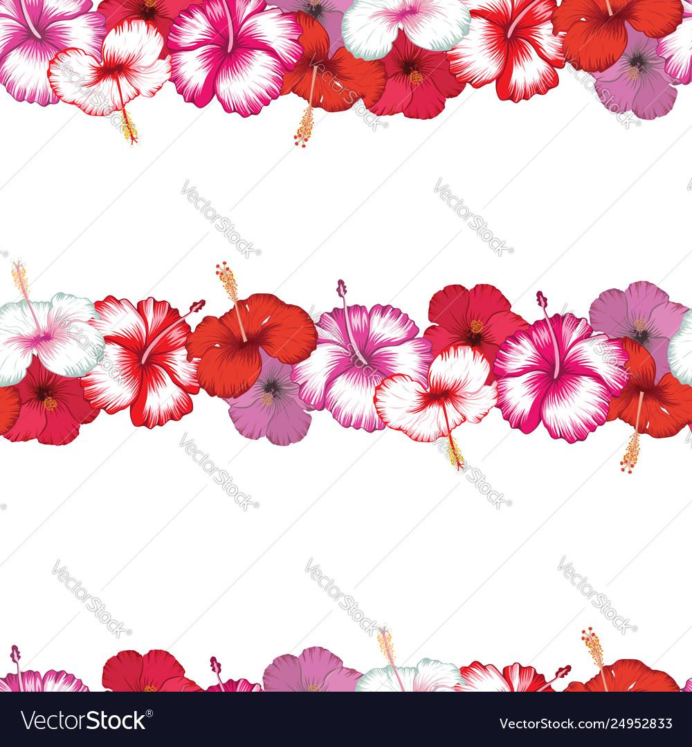 Exotic stripes flowers hibiscus white