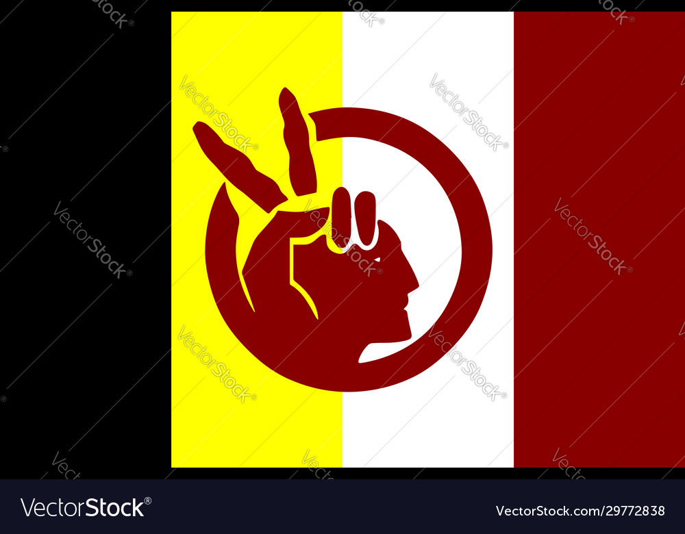American indian movement flag in proportions