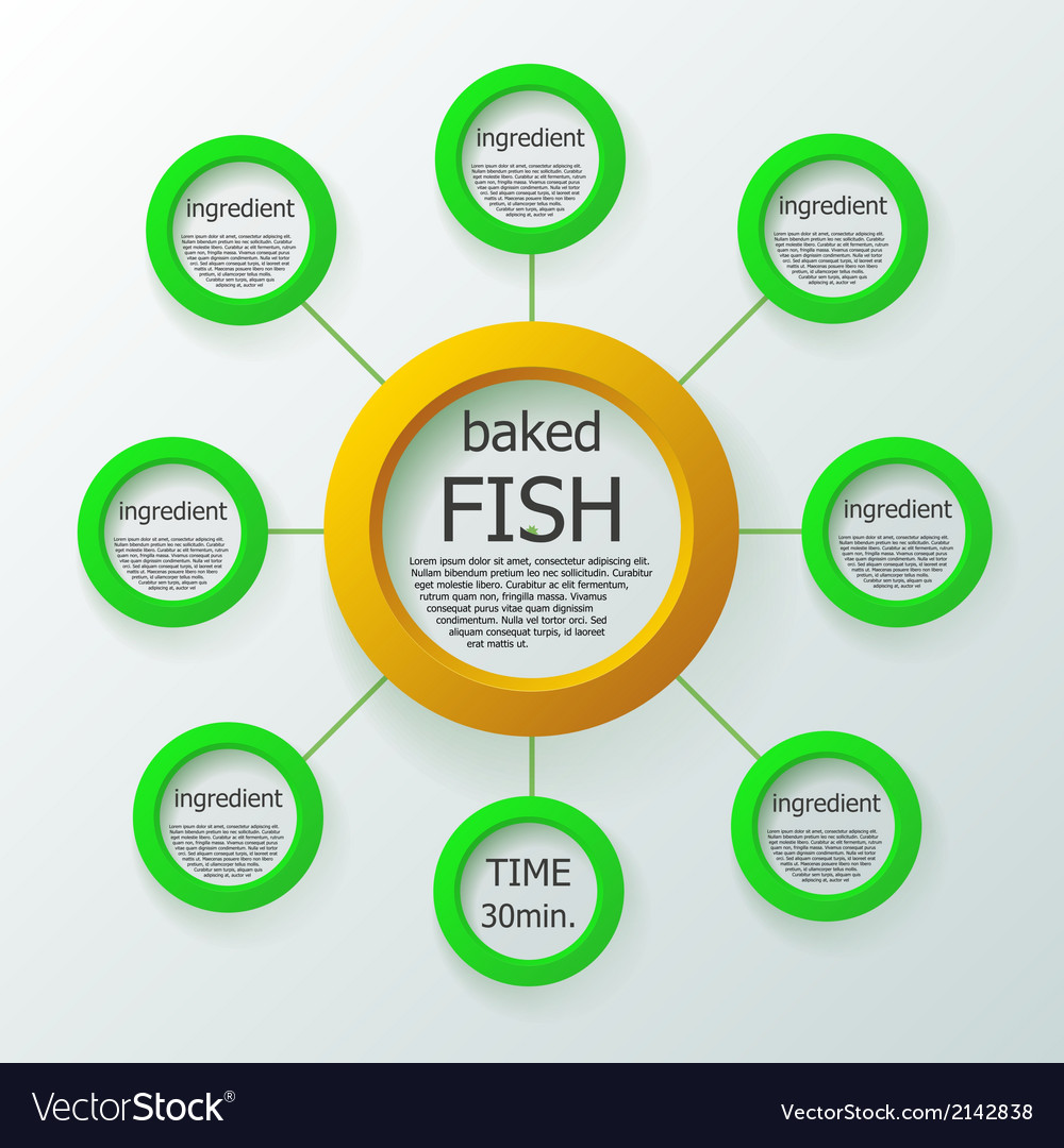 Food recipe in infographic style vector image