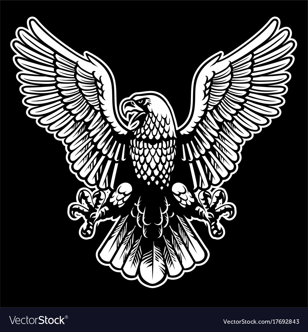Eagle black and white vector image