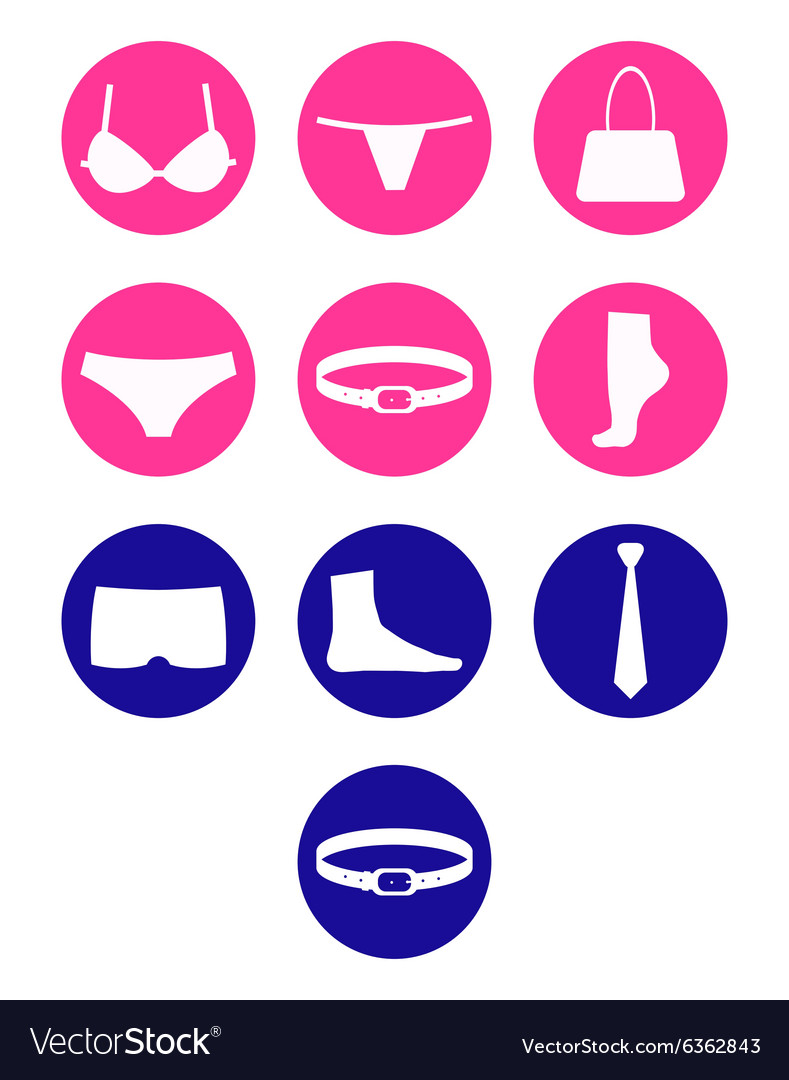 Set underwear and accessories vector image