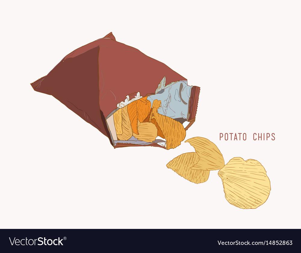 Potato chips packaging bag of chip sketch