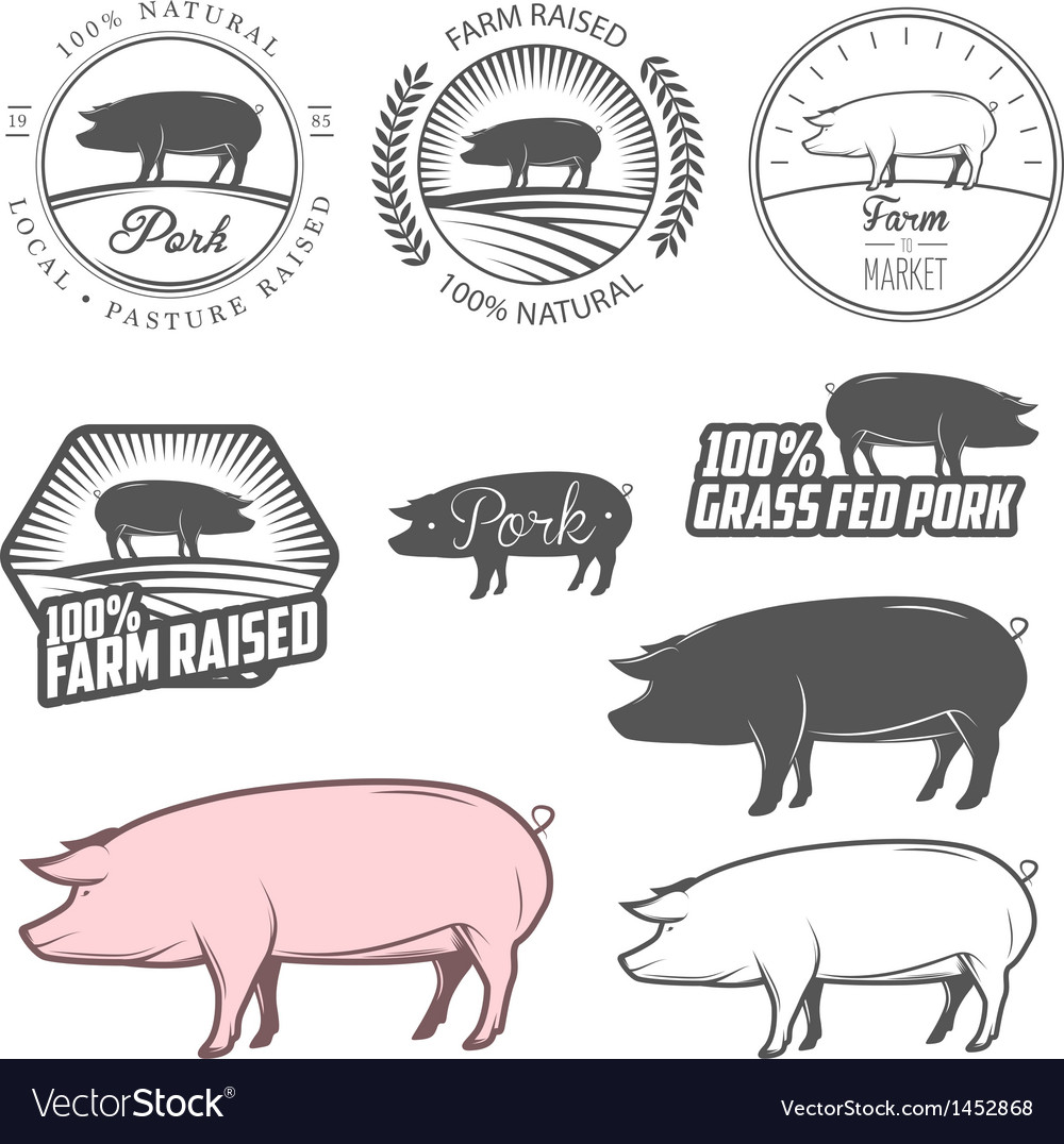 Set of pork labels badges and design elements