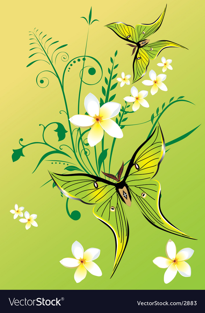 Floral graphic