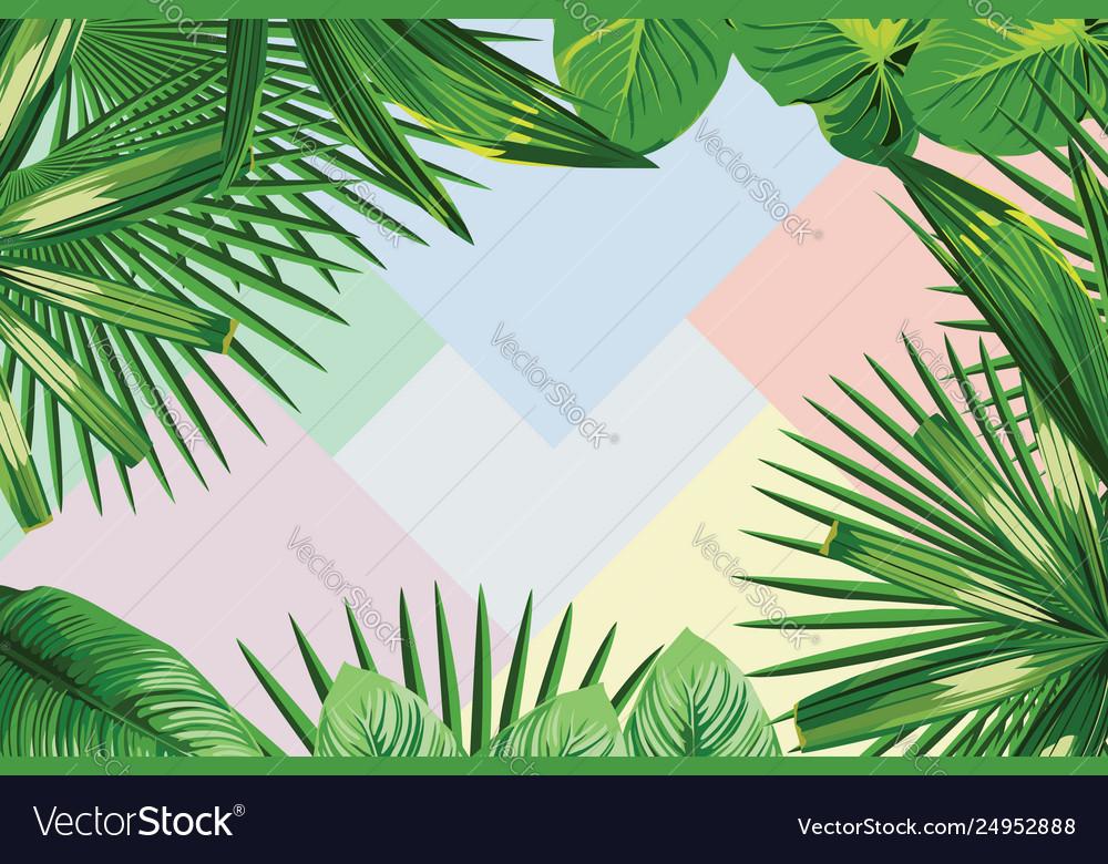 Frame tropical leaves