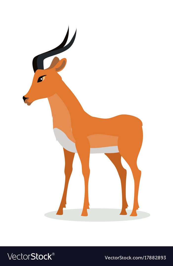 antelope impala cartoon icon in flat design vector image rh vectorstock com cartoon antelope clipart cartoon antelope drawing