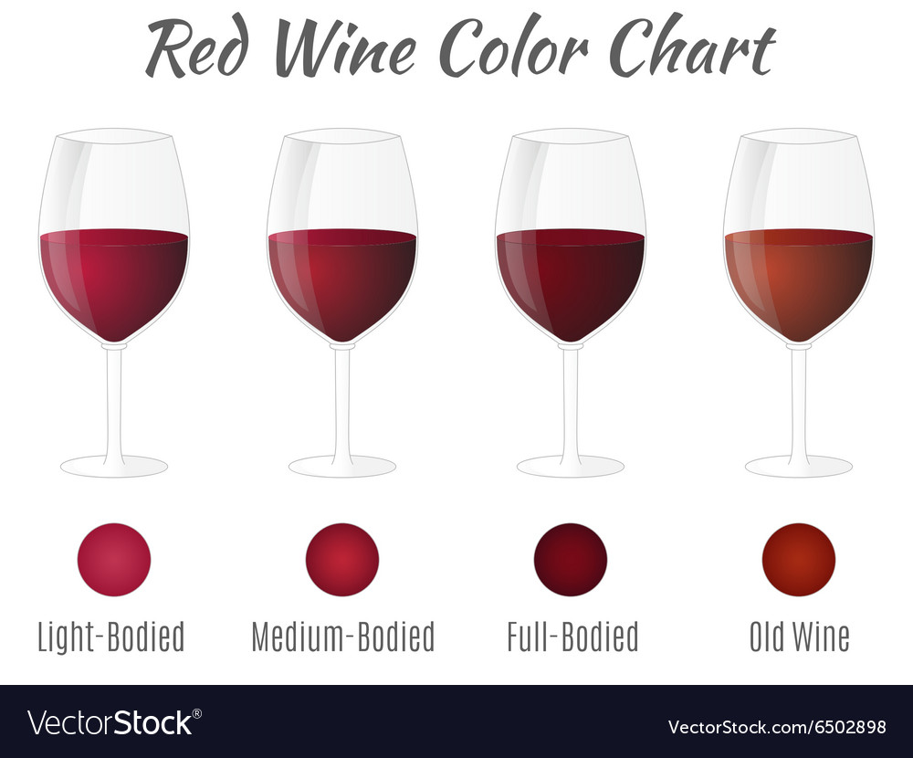 Red wine color chart Hand drawn wine glasses
