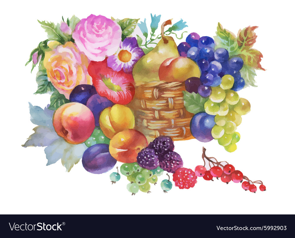 Colorful summer ripe fruits basket watercolor