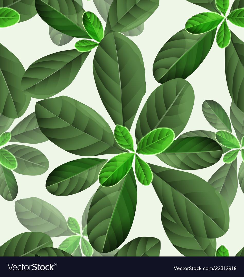 Leaf pattern background2