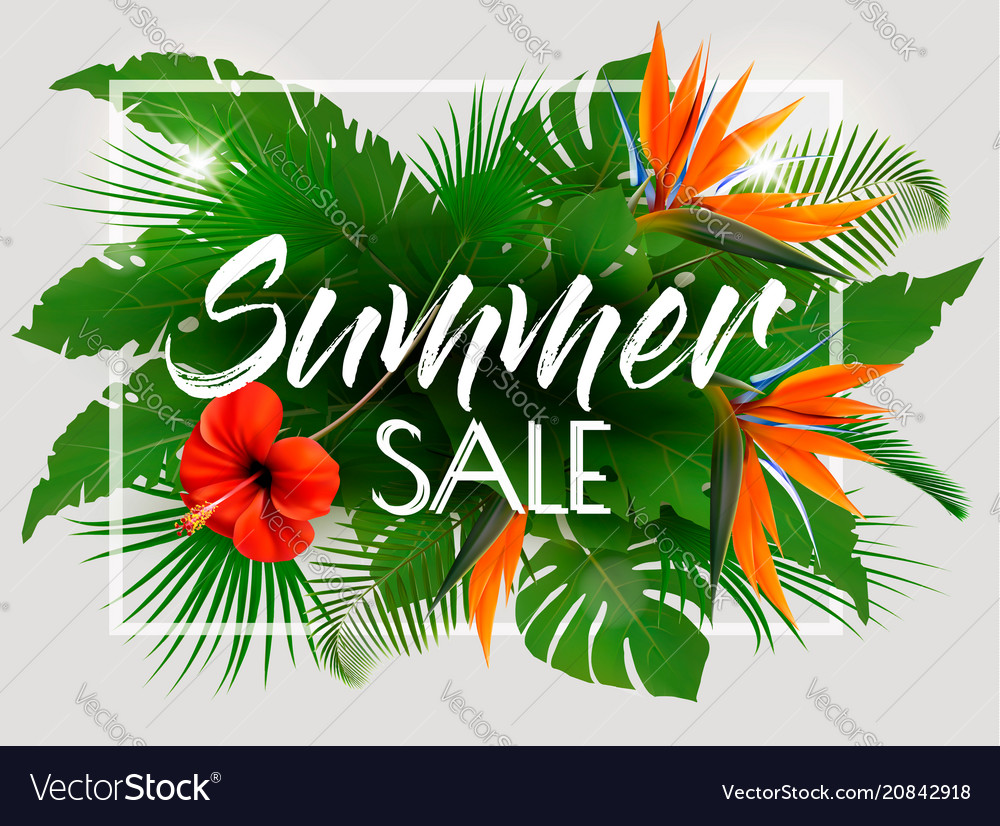 Tropical summer sale background with exotic