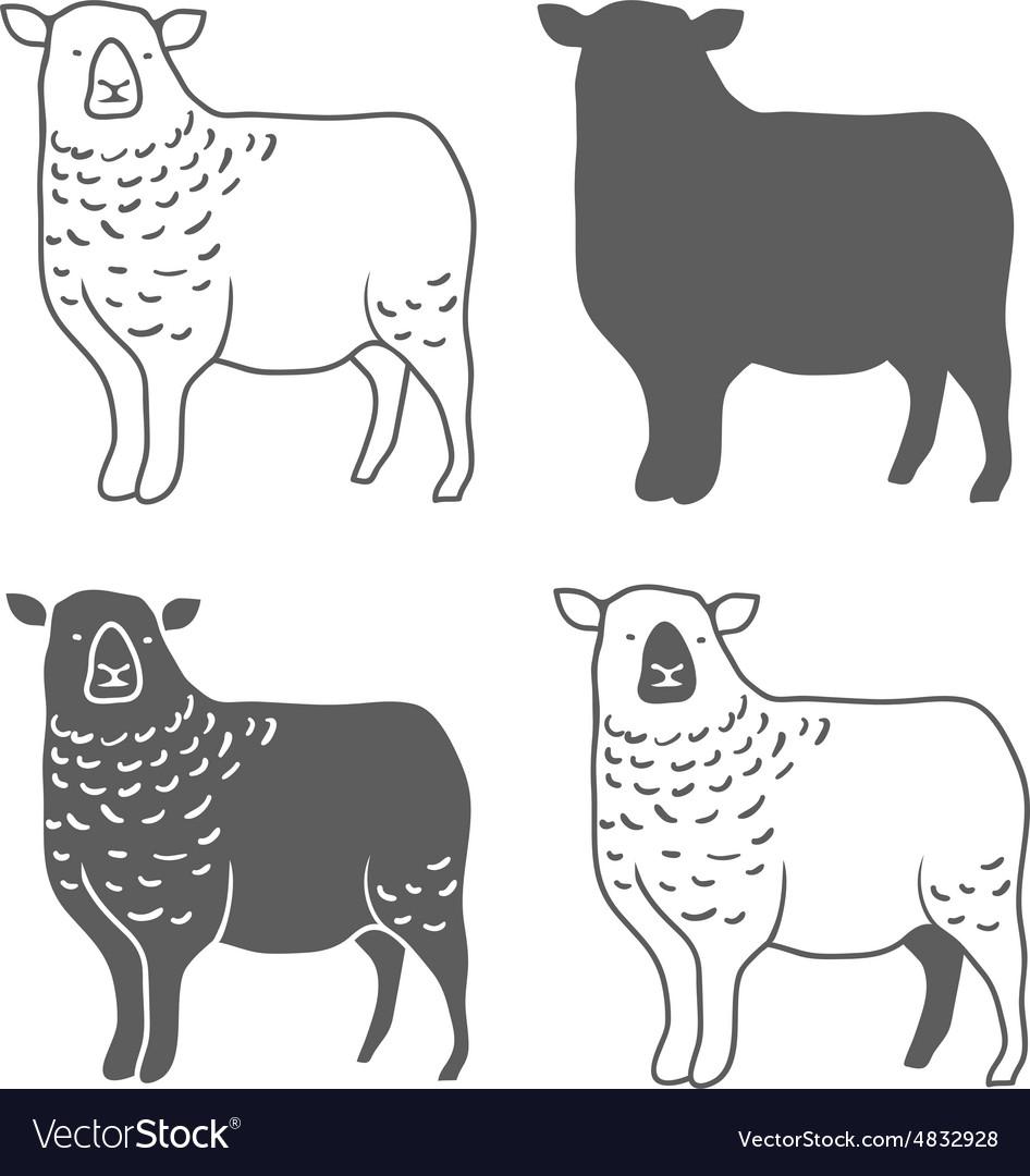 Domestic Animal Sheep