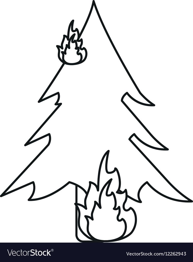 Wildfire destroys pines smock line