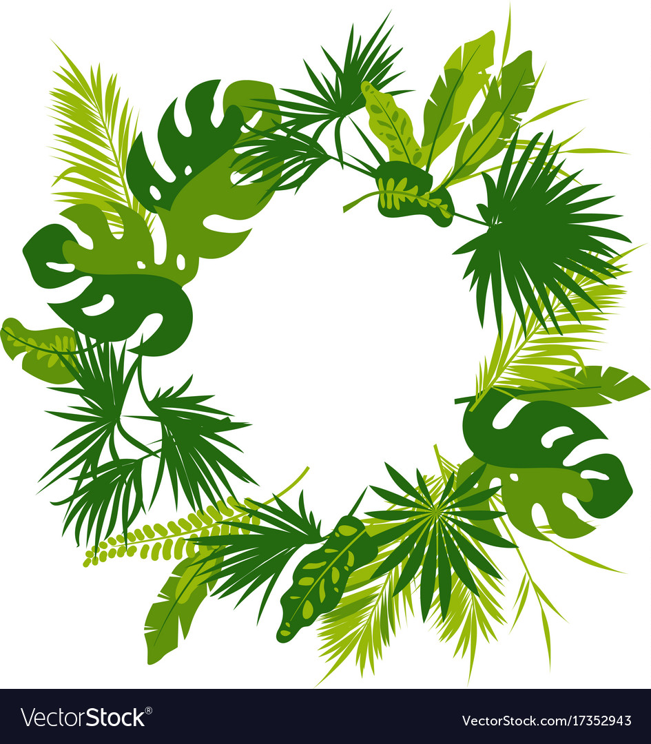 wreath of tropical leaves royalty free vector image