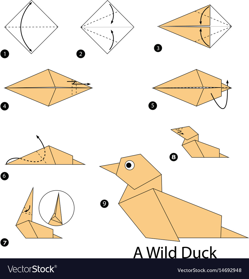 Step instructions how to make origami a duck Vector Image | 1080x966