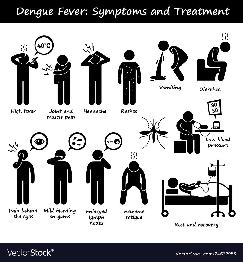 Dengue fever symptoms and treatment aedes