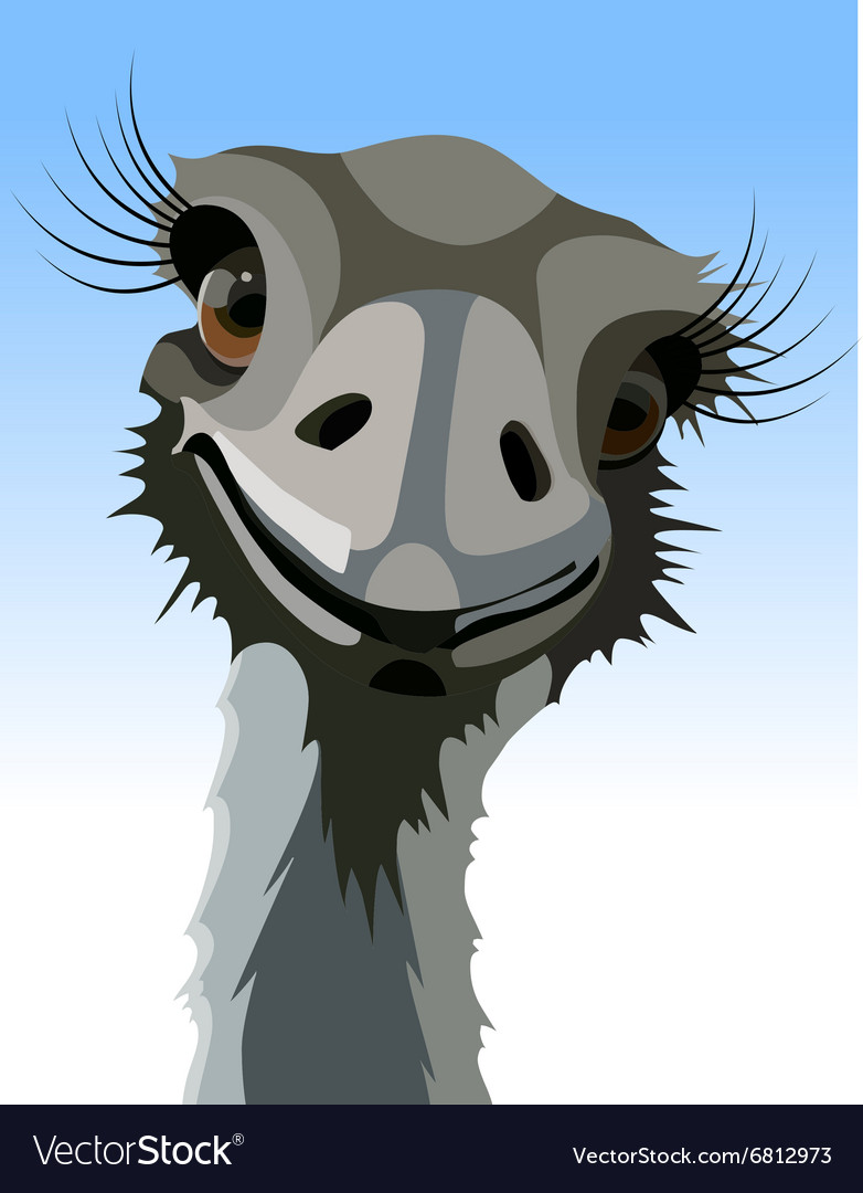 Cartoon smiling ostrich with long eyelashes