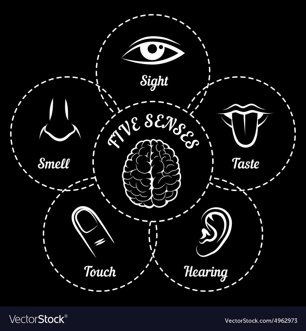 Five senses scheme