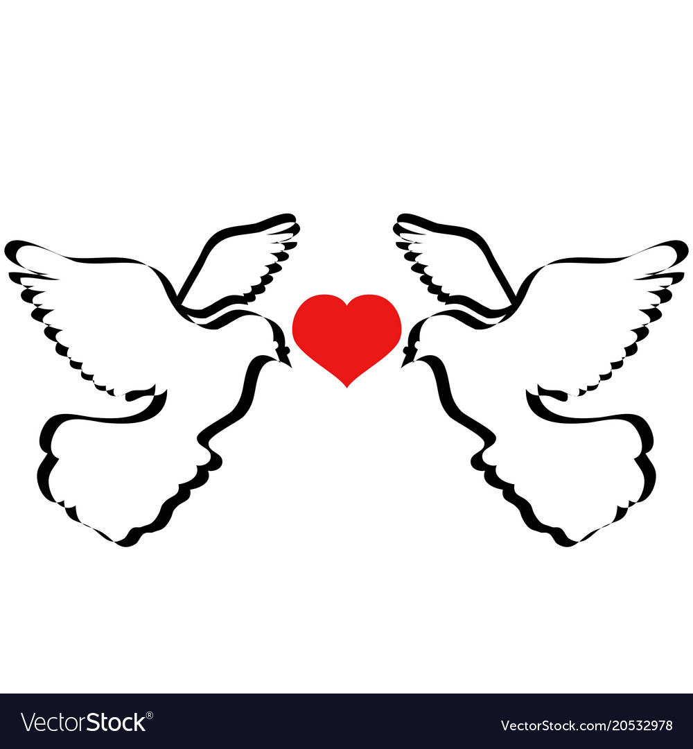 Doves flying with heart