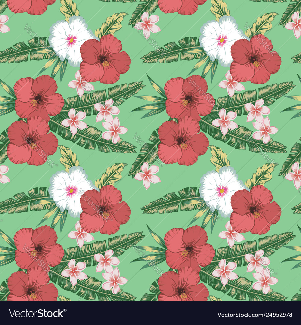 Hibiscus Plumeria Palm Leaves Seamless Green Vector Image