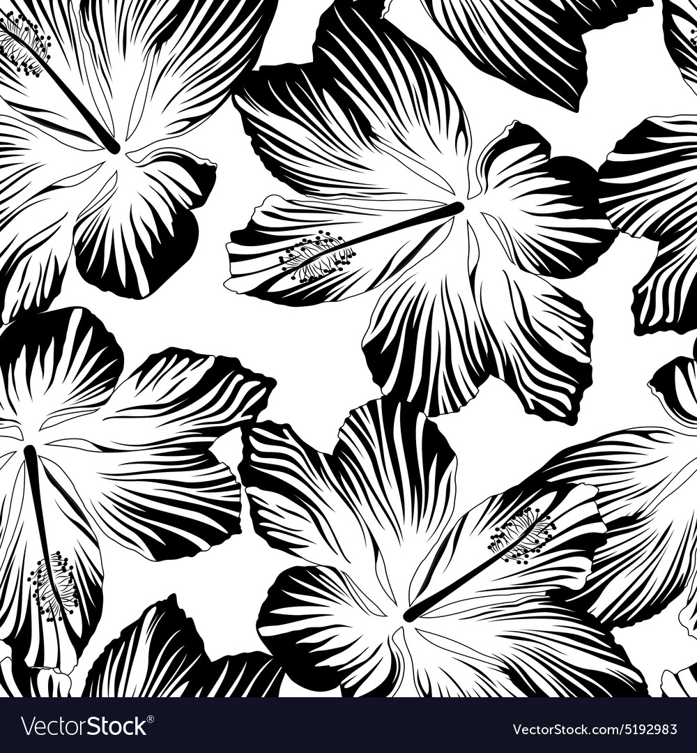 Tropical flowers seamless pattern in black and vector image mightylinksfo