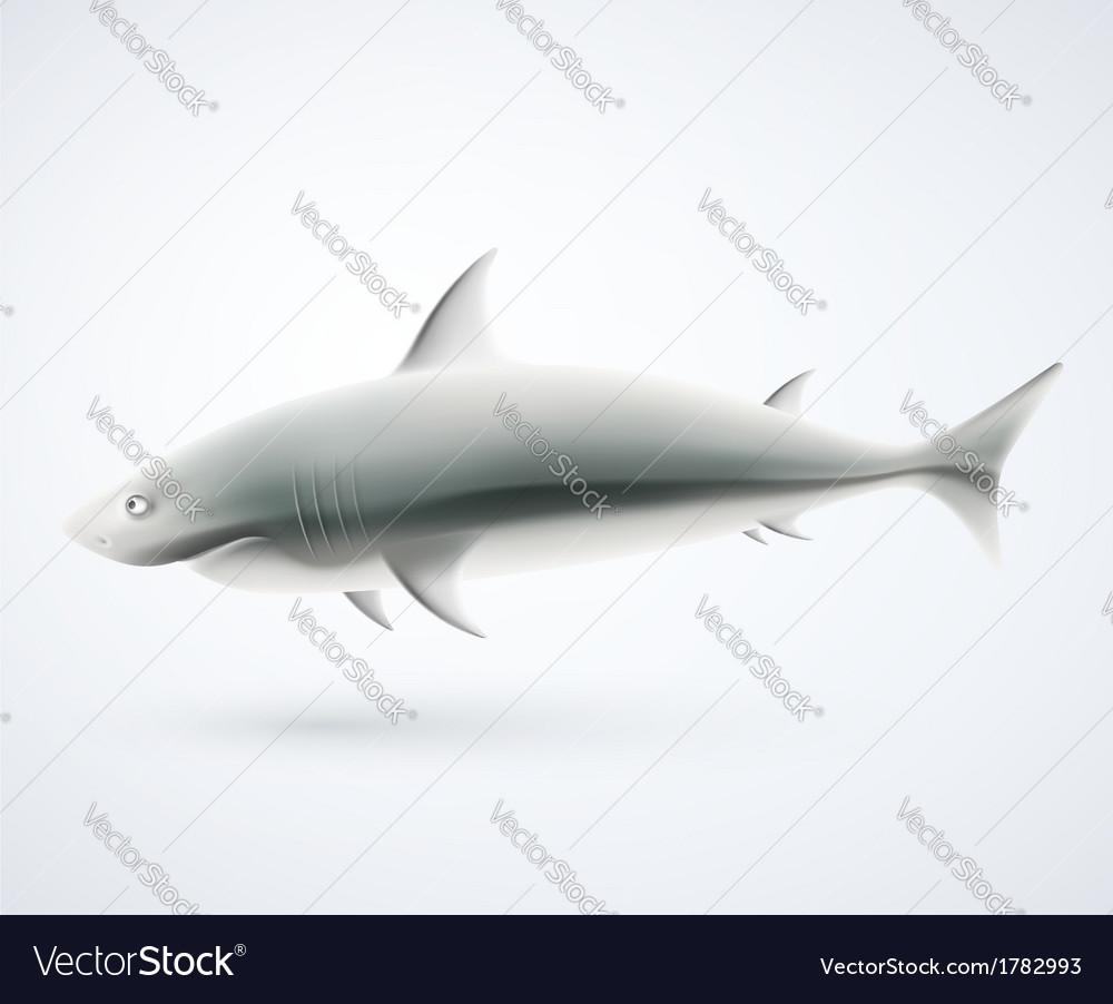 Isolated shark