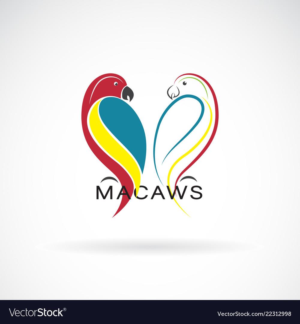 A parrot design on white background bird icon