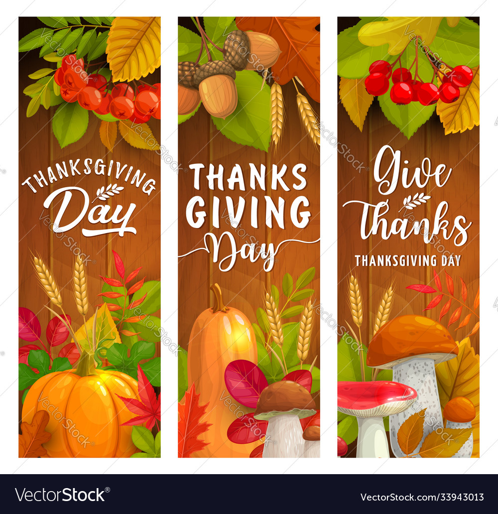 Thanksgiving day banners autumn harvest holiday